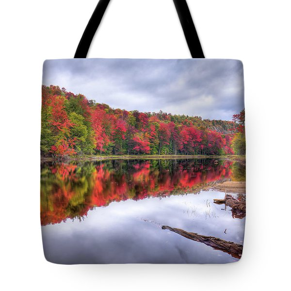 Tote Bag featuring the photograph Autumn Color At The Pond by David Patterson