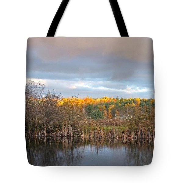 Autumn Color Gray Sky  Tote Bag