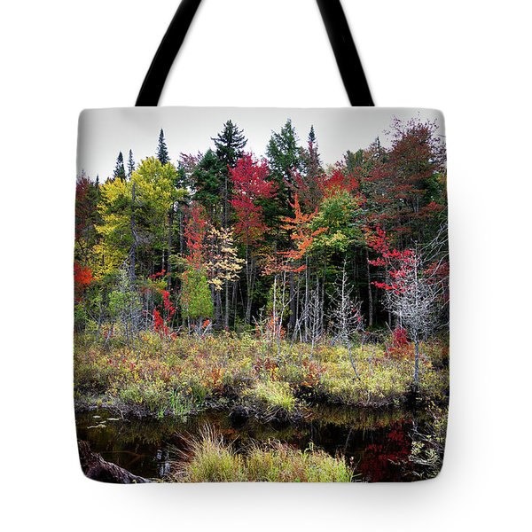 Tote Bag featuring the photograph Autumn Color In The Adirondacks by David Patterson