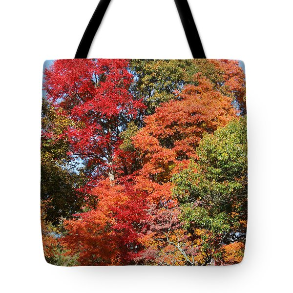 Autumn Color Spray Tote Bag