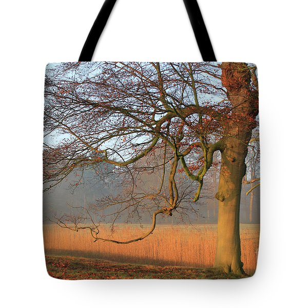 Autumn Colored Landscape Tote Bag