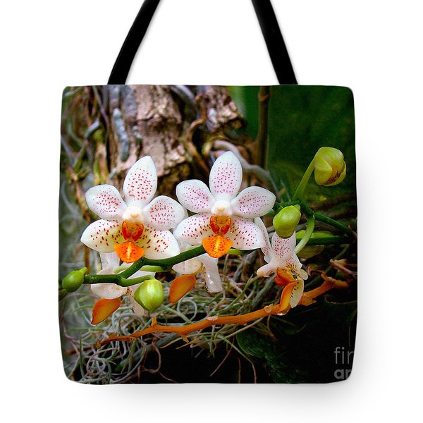 Autumn Colored Orchids Tote Bag by Sue Melvin