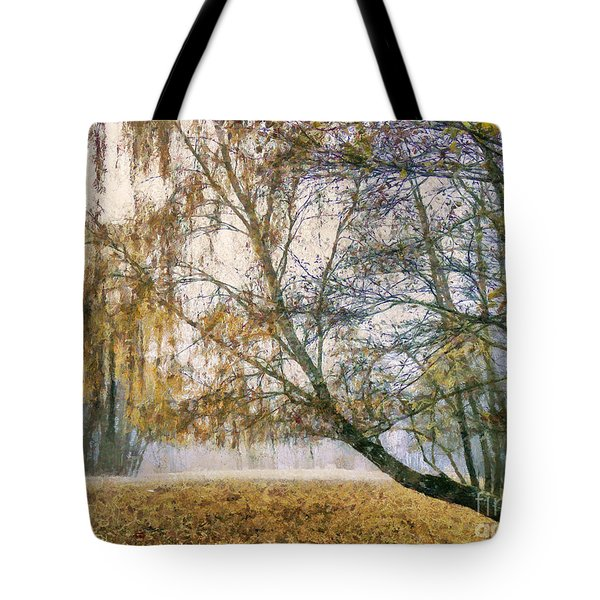 Autumn Colorful Birch Trees Paint Tote Bag by Odon Czintos