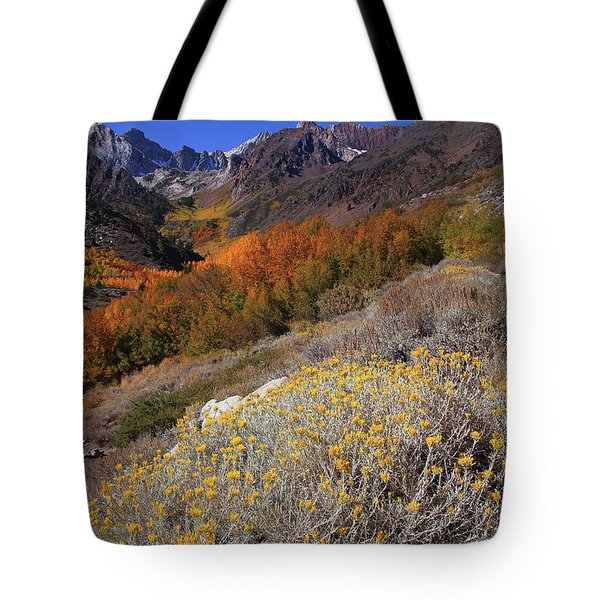 Autumn Colors At Mcgee Creek Canyon In The Eastern Sierras Tote Bag