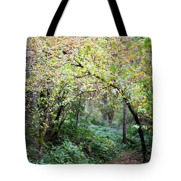 Autumn Colors In The Forest Tote Bag