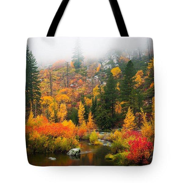 Autumn Colors Symphony Tote Bag