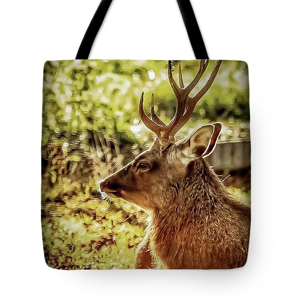 Tote Bag featuring the photograph Autumn Colours Stag by Cliff Norton