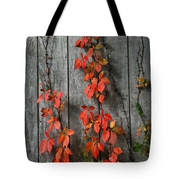 Autumn Creepers Tote Bag