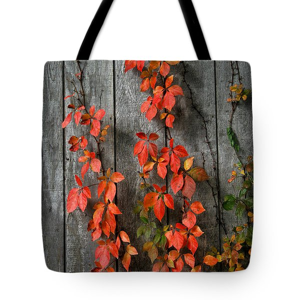 Autumn Creepers Tote Bag