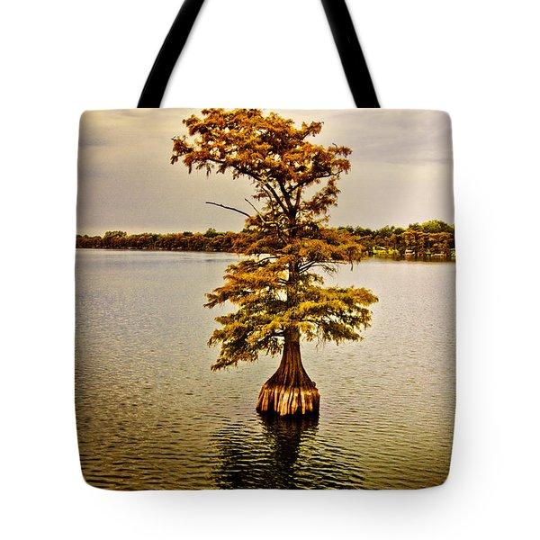 Autumn Cypress Tote Bag by Scott Pellegrin