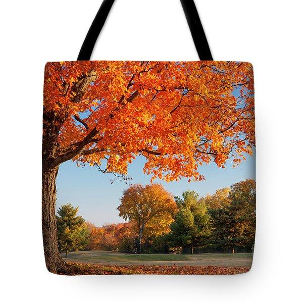 Autumn Dawn Tote Bag by Brian Jannsen