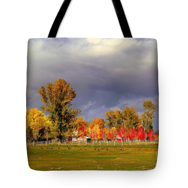 Autumn Day Tote Bag by Irina Hays