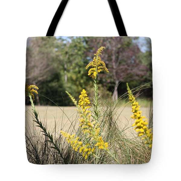Tote Bag featuring the photograph Autumn  by Debra Forand