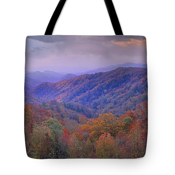 Autumn Deciduous Forest Great Smoky Tote Bag by Tim Fitzharris