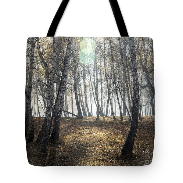 Autumn Deep Fog In The Morning Birch Grove Tote Bag by Odon Czintos