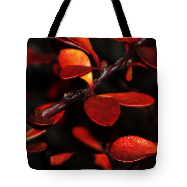 Autumn Details Tote Bag