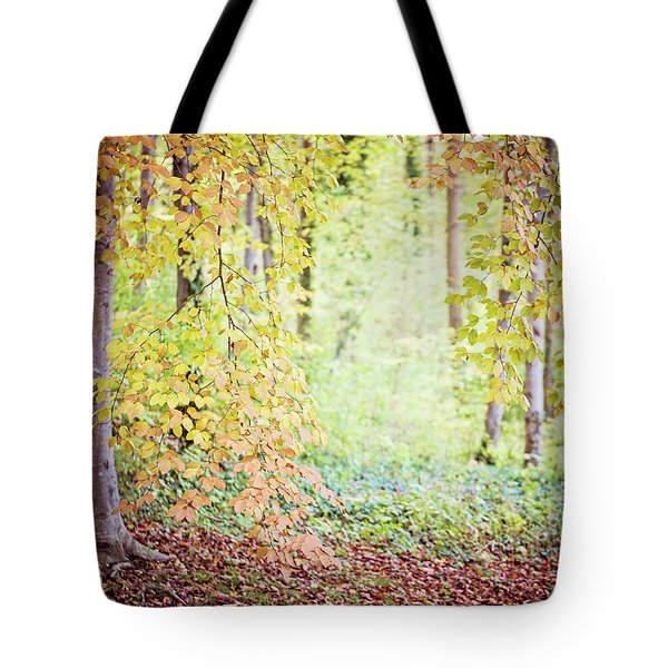 Autumn Dreams Tote Bag by Melanie Alexandra Price