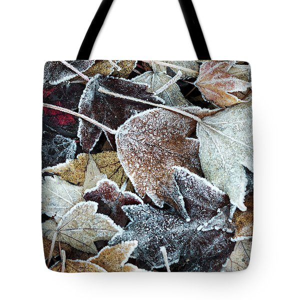 Tote Bag featuring the photograph Autumn Ends, Winter Begins 1 by Linda Lees