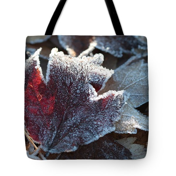 Tote Bag featuring the photograph Autumn Ends, Winter Begins 2 by Linda Lees