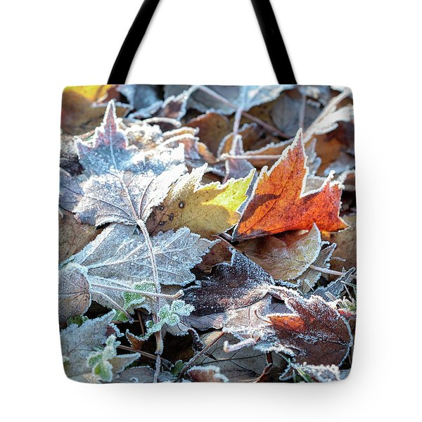 Autumn Ends, Winter Begins 3 Tote Bag