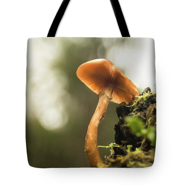 Autumn Essence Tote Bag