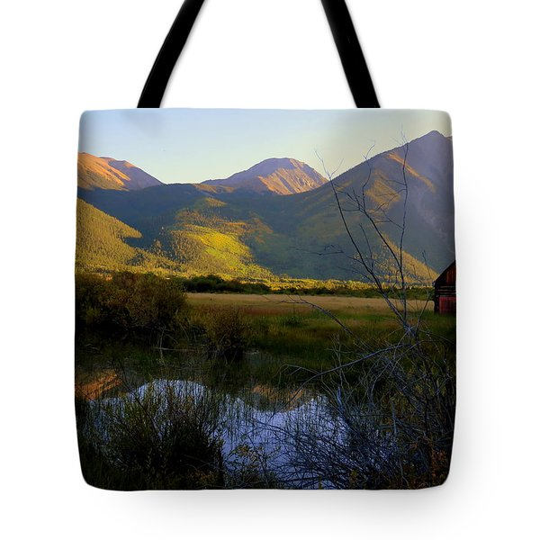 Autumn Evening Tote Bag by Karen Shackles