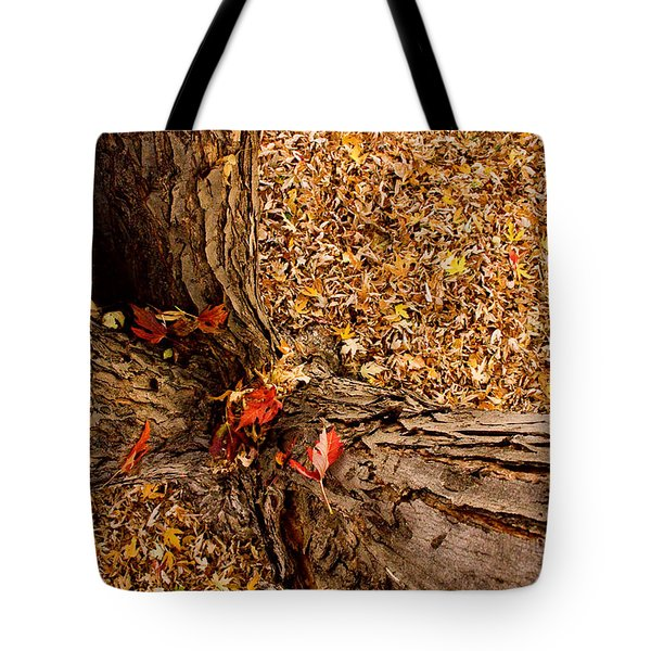 Autumn Fall Tote Bag by James BO  Insogna
