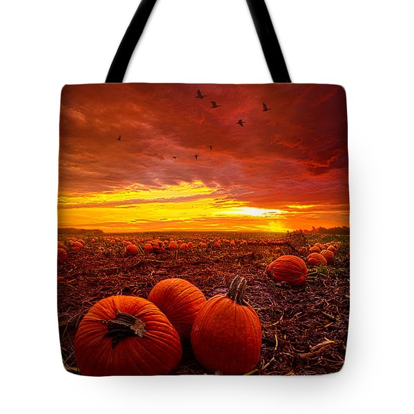 Autumn Falls Tote Bag by Phil Koch