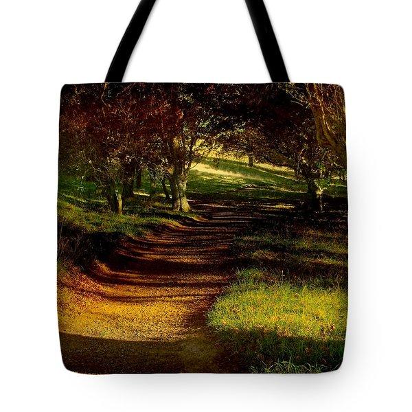 Autumn Feel Tote Bag