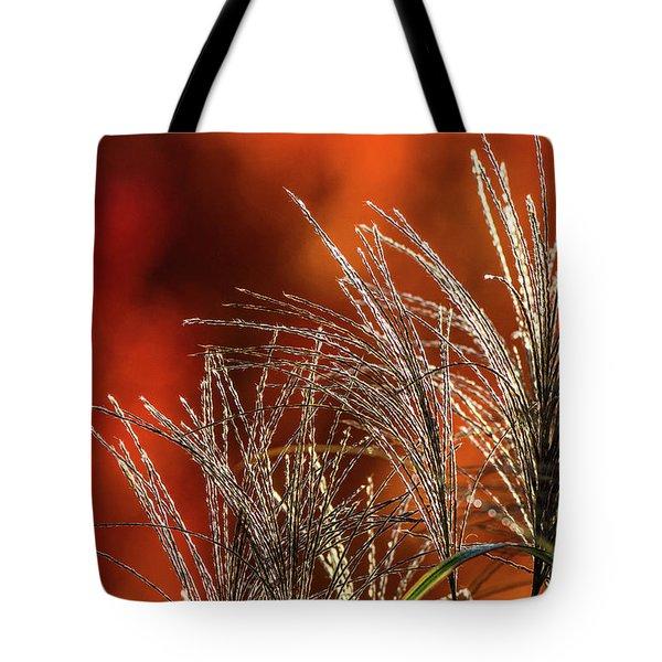 Autumn Fire - 1 Tote Bag