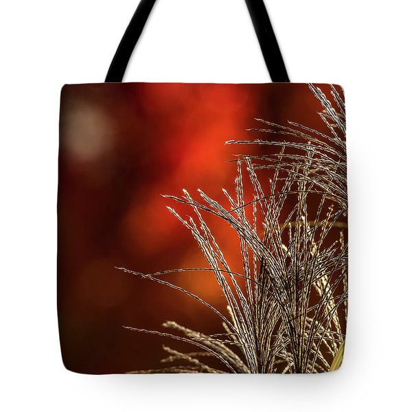 Autumn Fire - 2 Tote Bag