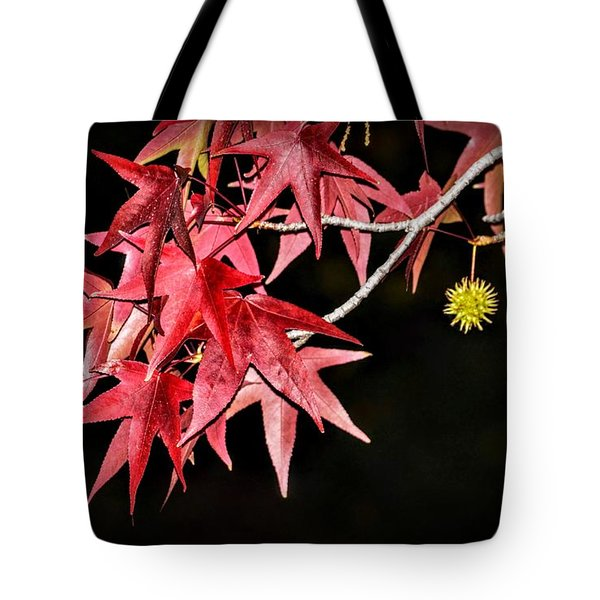 Tote Bag featuring the photograph Autumn Fire by AJ Schibig