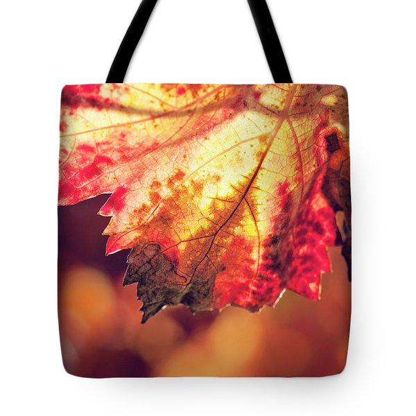 Autumn Fire Tote Bag