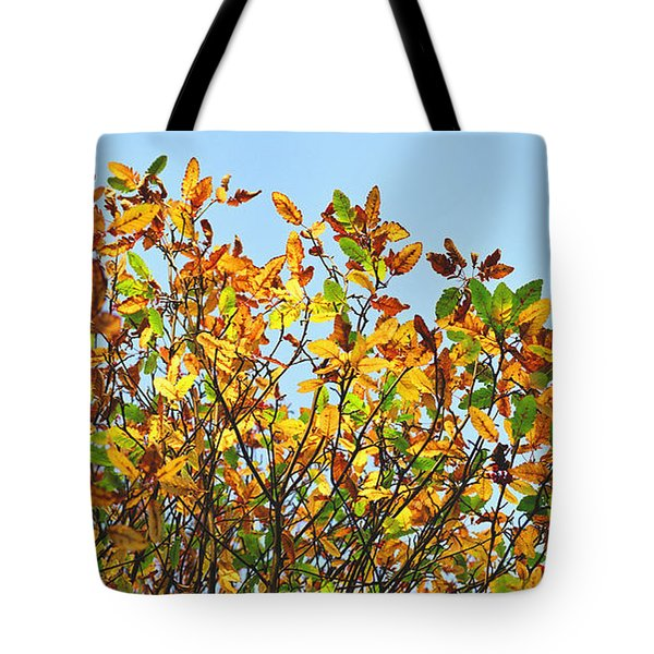 Tote Bag featuring the photograph Autumn Flames - Original by Rebecca Harman