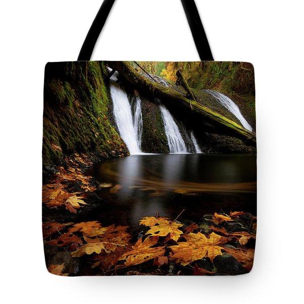 Autumn Flashback Tote Bag