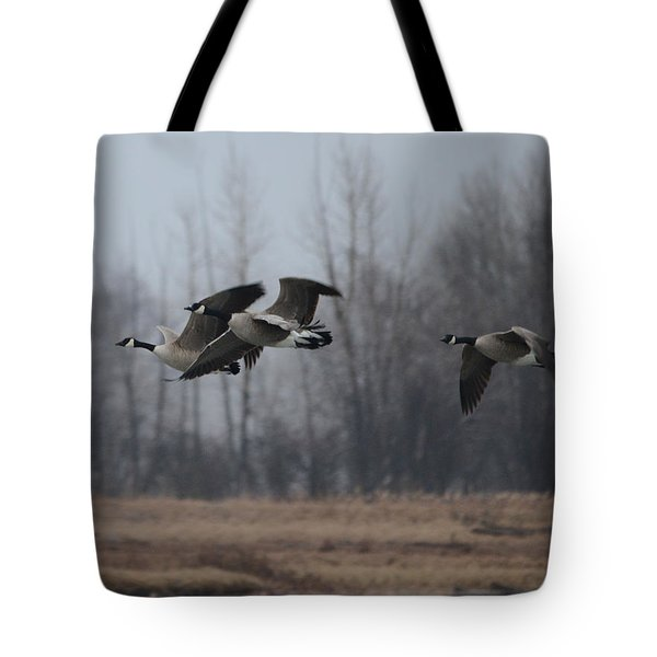 Autumn Flight Tote Bag