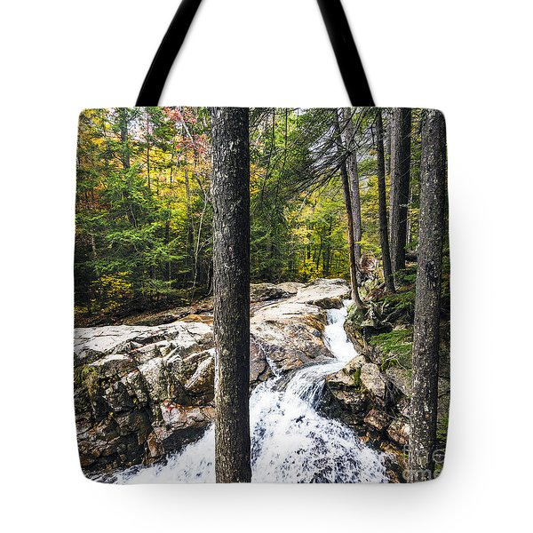Tote Bag featuring the photograph Autumn Flows by Anthony Baatz