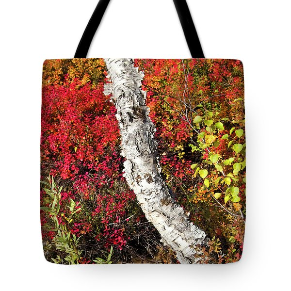 Autumn Foliage In Finland Tote Bag by Heiko Koehrer-Wagner