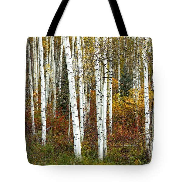 Autumn Forest Beauty Tote Bag