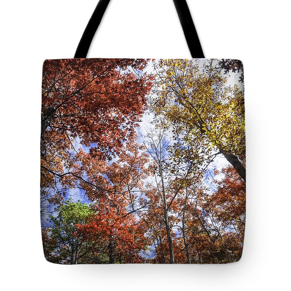 Autumn Forest Canopy Tote Bag by Lynn Bauer