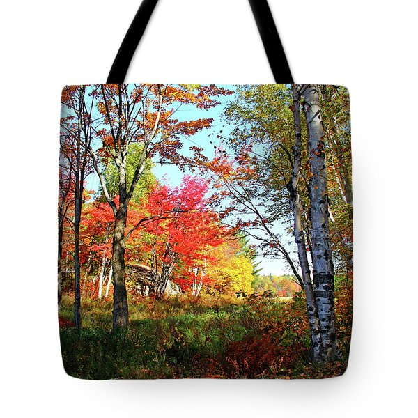 Tote Bag featuring the photograph Autumn Forest by Debbie Oppermann