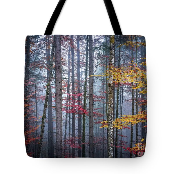 Tote Bag featuring the photograph Autumn Forest In Fog by Elena Elisseeva
