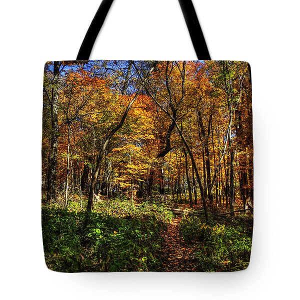 Autumn Forest Path At Johnson's Mound Tote Bag