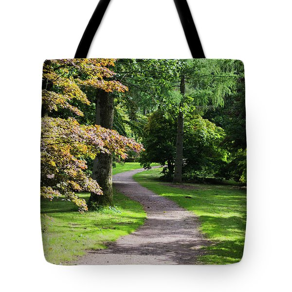Tote Bag featuring the photograph Autumn Forest Path by Scott Lyons