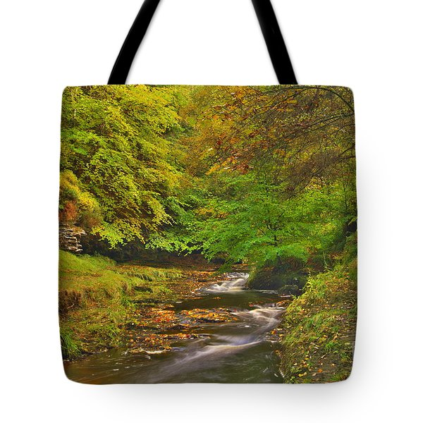 Autumn Forest Stream Tote Bag