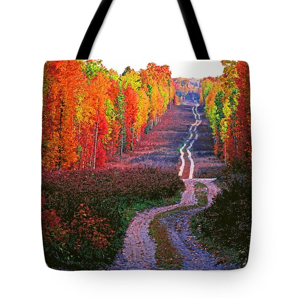 Autumn Forest Track Tote Bag by Dennis Cox WorldViews