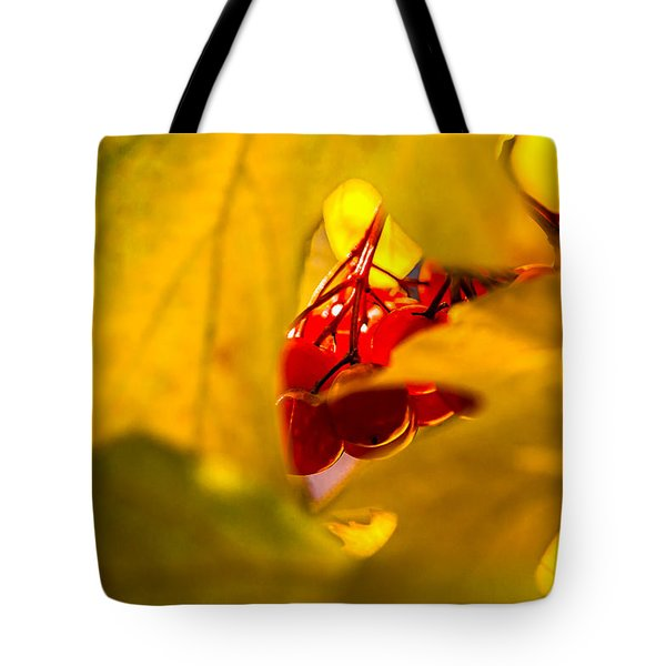 Tote Bag featuring the photograph Autumn Fruits - Viburnum Berries by Alexander Senin