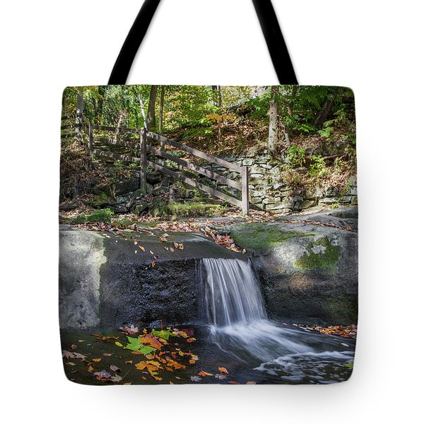 Tote Bag featuring the photograph Autumn Glen Olmsted Falls by Lon Dittrick