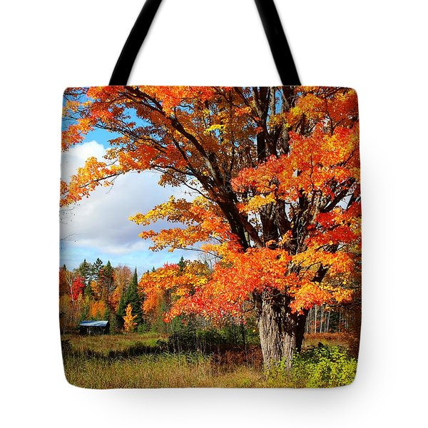 Tote Bag featuring the photograph Autumn Glory by Gigi Dequanne