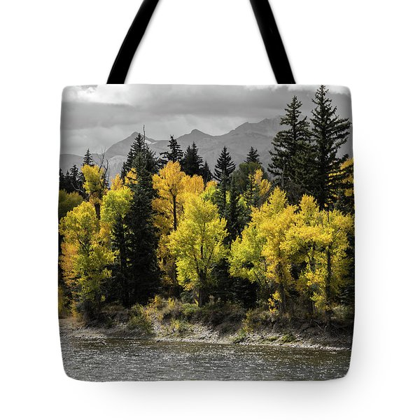 Tote Bag featuring the photograph Autumn Glow by Colleen Coccia